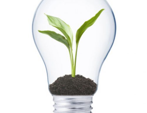 Nachhaltiges Handeln – nachhaltige Kommunikation – nachhaltiger Erfolg