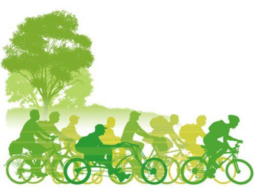 Neue Herausforderungen im Zweiradmarkt